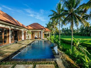 Villa GUSKU/2Bdr PrivatePool,Ricefield view - Ubud vacation rentals