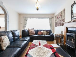 4 bedroom House with Internet Access in Dublin - Dublin vacation rentals