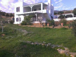 Andros, sunny, traditional villa - Gavrio vacation rentals