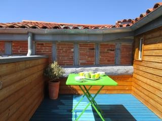 TAUR Terrace Citycenter - Toulouse vacation rentals