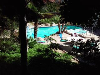 """The Oasis""/""Garden of Eden"" awaits - Oceanside vacation rentals"