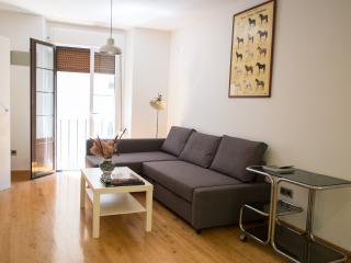 Cozy flat + bull running balcony - Pamplona vacation rentals