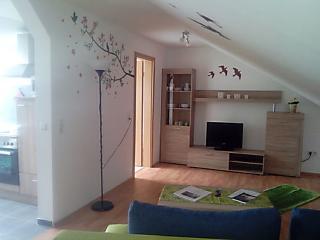 Gemütliche Wohnung mit 1 Schlafzimmer - Pirmasens vacation rentals
