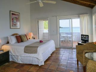 Oceanfront Studio, Perfect Location - Cruz Bay vacation rentals