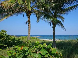 Beautiful Condo by the Beach with Heated Pool - Boca Raton vacation rentals