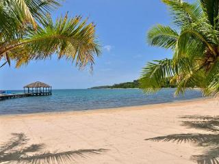 Casa Azul Turquesa @ PALMETTO BAY PLANTATION - West End vacation rentals