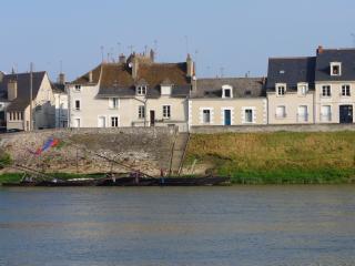 LA PORTE BLEUE : 2 gîtes face au château - Amboise vacation rentals