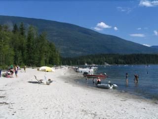 Beautiful 2 bedroom Vacation Rental in Seymour Arm - Seymour Arm vacation rentals