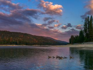 Yosemite Bass Lake Lakefront - Bass Lake vacation rentals