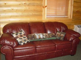 1 bedroom House with Towels Provided in Victor - Victor vacation rentals