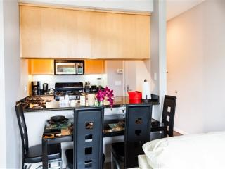 BEAUTIFUL, SPACIOUS AND LUXUROUS 1 BEDROOM APARTMENT - Chicago vacation rentals