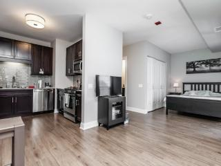 ELEGAN, LUXURIOUS AND BEAUTIFULLY FURNISHED CONVERTIBLE 1 BEDROOM UNIT - Chicago vacation rentals