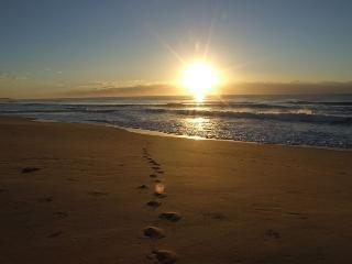 Sunrise Sanctuary - A stunning OCEANFRONT retreat! - Virginia Beach vacation rentals