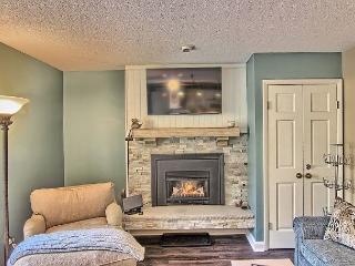 2 bedroom Villa with Internet Access in Boyne Falls - Boyne Falls vacation rentals
