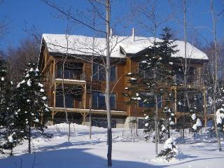 Nice Chalet with Internet Access and Television - Petite-Riviere-Saint-Francois vacation rentals