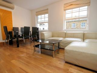 3 BR (3) - Baker Street / Marylebone - London vacation rentals