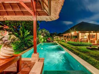 Spacious 3 BedRooms Villa at Seminyak-Villa Shanti - Seminyak vacation rentals