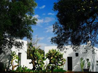 Splendid farmhouse in olive grove - San Vito dei Normanni vacation rentals