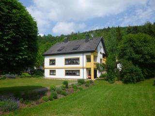 Nice Condo with Deck and Internet Access - Heiligenstadt vacation rentals