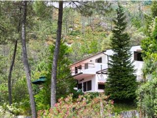 4 B, Home, Full Kitchen, Sleeps 10 - RPE 318 - Vilar da Veiga vacation rentals