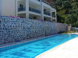 1 BR Apartment Sleeps 3 - VMS 3878 - Mugla vacation rentals