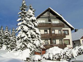 Sunny 1 bedroom Vacation Rental in Braunlage - Braunlage vacation rentals