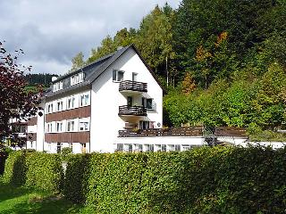 Sunny 1 bedroom Vacation Rental in Schmallenberg - Schmallenberg vacation rentals