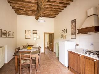 Spacious Apartment Il Picchio in Siena countryside - Siena vacation rentals