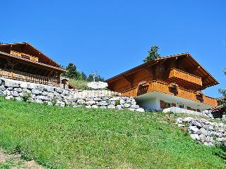 5 bedroom Villa in Leysin, Alpes Vaudoises, Switzerland : ref 2296315 - Leysin vacation rentals