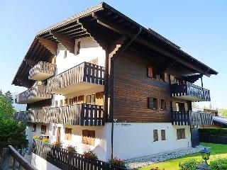 Comfortable Condo with Internet Access and Television - Villars-sur-Ollon vacation rentals
