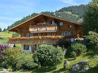 Sunny 4 bedroom Condo in Gstaad with Internet Access - Gstaad vacation rentals