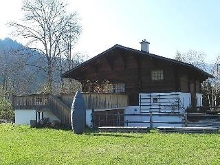 Nice 5 bedroom Gstaad Apartment with Internet Access - Gstaad vacation rentals