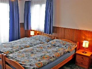 Comfortable House with Internet Access and Television - Bettmeralp vacation rentals