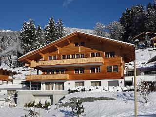 4 bedroom Apartment in Grindelwald, Bernese Oberland, Switzerland : ref 2300417 - Grindelwald vacation rentals