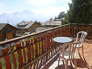 Bright House with Internet Access and Television in Villars-sur-Ollon - Villars-sur-Ollon vacation rentals