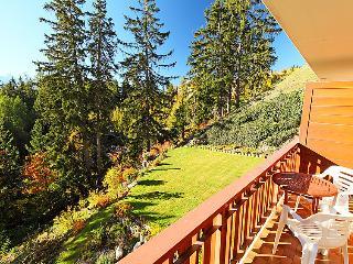 Les Faverges - INH 26802 - Crans-Montana vacation rentals