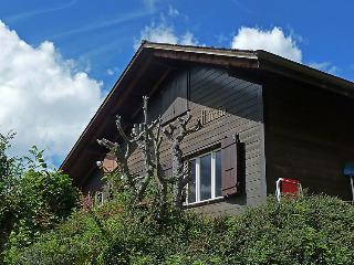 3 bedroom Villa in Wengen, Bernese Oberland, Switzerland : ref 2300584 - Wengen vacation rentals