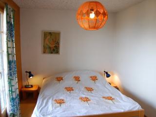 Beke - INH 24946 - Nendaz vacation rentals