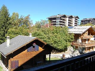Ecluses 11 - INH 25109 - Nendaz vacation rentals