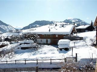 Nice House with Internet Access and Television - Zweisimmen vacation rentals