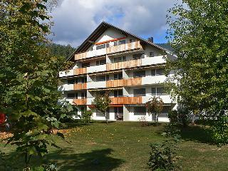 1 bedroom Apartment in Laax, Surselva, Switzerland : ref 2235278 - Laax vacation rentals