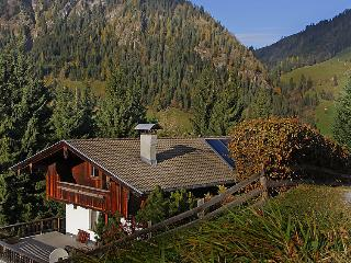 Sunny 2 bedroom House in Alpbach - Alpbach vacation rentals