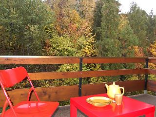 Derborence 25 - INH 25079 - Nendaz vacation rentals