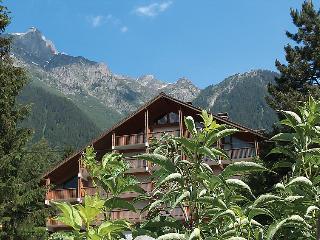 Bright House in Chamonix with Television, sleeps 4 - Chamonix vacation rentals