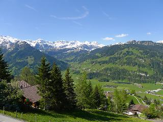 5 bedroom Villa in Lenk, Bernese Oberland, Switzerland : ref 2297026 - Lenk vacation rentals