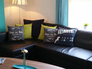 Cardiff Apartment - 2 kitchens/showers (sleeps 6) - Cardiff vacation rentals