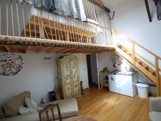 B&B Poincare 1 - Studio - ZEA 39105 - Brussels vacation rentals