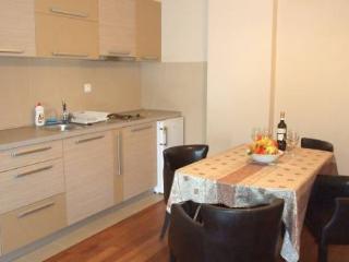 Oaza 2 - studio 1/4 #3 - Petrovac vacation rentals