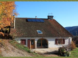 The Charri: renovated farm in beautiful mountains - Rupt-sur-Moselle vacation rentals
