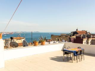 4 BR Flat w/terrace Taksim-Cihangir - Istanbul vacation rentals